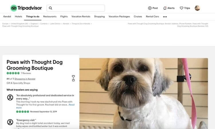 dog-groomer-online-reviews